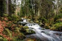 SORTIE-NATURE-TRANSITION-LE-MONDE-QUI-CHANGE Xertigny