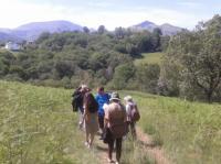 balade-colline-bergerie-2 Cambo les Bains