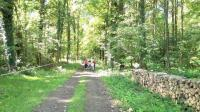 Evenement Any Martin Rieux ANNULÉ - Thiérache Trail Aventure