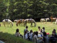 Evenement Salles la Source Randonnée équestre à la ferme du Badour pour cavaliers confirmés