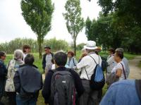 Evenement Plassac Visite guidée samedi comptage à Terres d'Oiseaux
