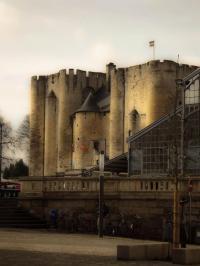 Le-Donjon-de-Niort Niort
