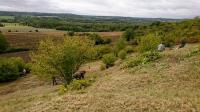 Evenement Berry au Bac Sortie nature à Oeuilly : Ensemble pour préserver la nature... et après -