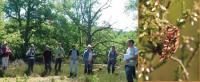 Evenement Berry au Bac Sortie participative nature à Mauregny : Les Noctuelles de la Chambrette