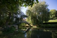 Evenement Vichel Nanteuil Sortie nature : Le Marais de Bourneville et ses plantes secrètes