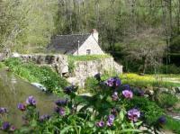 Evenement Montbazens Visite des Martinets du Lézert