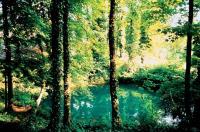 Idée de Sortie Thin le Moutier Circuit du Bois de Néparcy