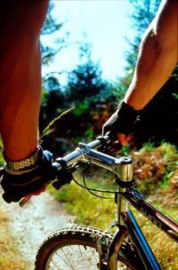 Idée de Sortie Challerange Balade à vélo: La route forestière de Talma