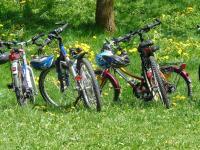 Idée de Sortie Revin Circuit Vélo