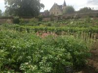 Jardin Potager des Etournelles Clermont