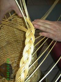 Idée de Sortie Saint Quentin le Petit Plantes et savoirs en Ardennes