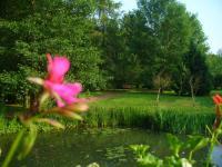 Idée de Sortie Mogues MATTON ET CLEMENCY, Village Fleuri 3 Fleurs