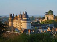 Chateau et parc de Langeais Indre et Loire