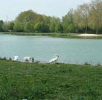 Idée de Sortie Saint Just Sauvage Gravière du Parc de la Béchère