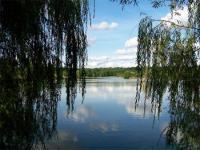 Idée de Sortie La Capelle Balaguier Pêche au Lac de Bannac / Lac aux oiseaux
