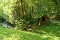 Idée de Sortie Illy Bois du Douaire, au coeur de la forêt de La Chapelle