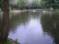 Idée de Sortie Ville sur Lumes Pêche aux étangs de Villers-Semeuse
