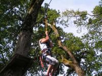 Idée de Sortie La Forêt de Tessé Parcours acrobatique Arbr'Anché