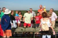Idée de Sortie Saint Pierre du Mont Visite Parcs à huitres L'autre goût de la Normandie