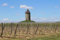 Idée de Sortie Vélines Boucle locale des moulins d'Eynesse