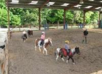 Idée de Sortie Faux Centre Equestre et Poney Club La Métairie du Roc