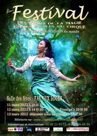 Affiche-du-Festival-2022-des-Stars-de-la-Magie-et-des-Etoiles-du-Cirque- Fay aux Loges