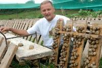 Idée de Sortie Agen d'Aveyron L'escargot des Sarradelles