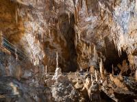 Idée de Sortie Villeneuve Grotte préhistorique de Foissac