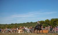 Evenement Chaource Festival Chasse et Campagne au château de Vaux
