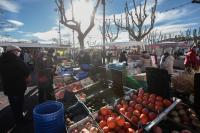 Evenement Montpellier LA PEYRADE : LES ETALS DE PROXIMITE