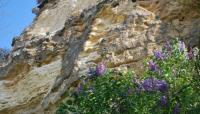 MUGRON-Gauriac-falaise-800x600 Gauriac