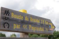 Idée de Sortie Ginestet Boucle du Brandal - Sainte Foy des Vignes - Ginestet