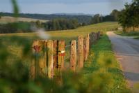 Idée de Sortie Illy Bois de La Garenne, la clé des champs