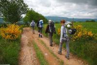 Idée de Sortie Le Nayrac Le GR®65 - Le chemin de Saint-Jacques de Compostelle : Étape n 4 : Golinhac - Conques