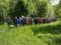 Evenement Plélauff Randonnée : Circuit du bois de Crennard
