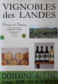 Domaine-de-Lise--1--1324x1920- Habas