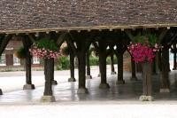 Idée de Sortie Brienne le Château Halle en bois de Brienne-le-Château