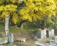 Idée de Sortie Theil Rabier Le chemin des Lavandières - Hanc
