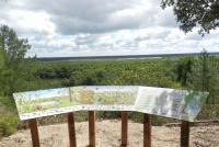 Reserve-Dunes-et-Marais-d-Hourtin-1 Hourtin