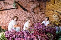 Idée de Sortie Illy Atelier des Fleurs Séchées