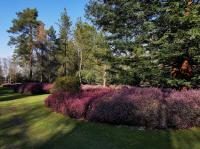 ING-Arboretum-Grandes-Bruyeres-20210320OTI-CG-163405 Ingrannes