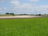 Idée de Sortie Monsaguel Plateau de Faux-Issigeac