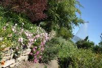 Idée de Sortie Istres Jardin méditerranéen