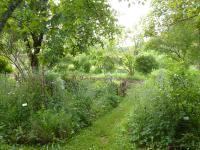 Jardin botanique d´ALAIJE Brantome