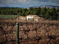 Idée de Sortie Mirabeau Le vignoble aixois, le vignoble des bastides - Un week-end à la montagne de la Vautubière