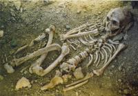 Idée de Sortie Bétaille Journées Européennes du Patrimoine : Visite Guidée du Musée de l'Homme de Néandertal