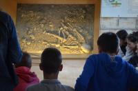 Idée de Sortie Beaulieu sur Dordogne Visite Guidée du Musée de l'Homme de Neandertal