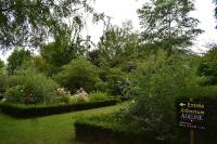 Idée de Sortie Sancergues Arboretum Adeline