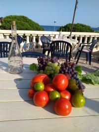 Restaurant de Poissons et de fruits de mer Ceyreste Before au Balcon