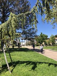 Jardin de la ville La Ciotat